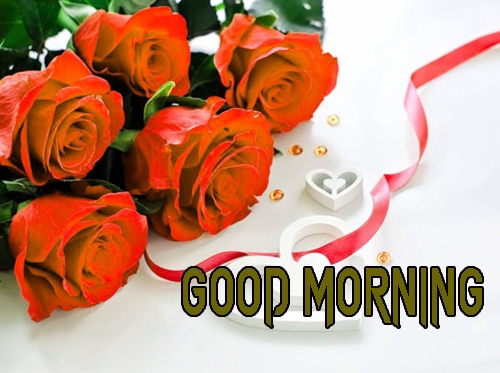 Good Morning Quotes In English - Good Morning Status & Images