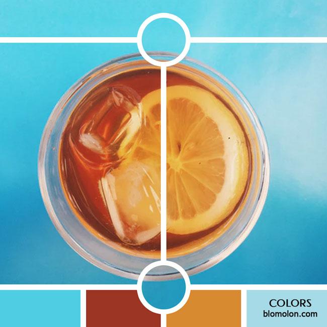 variedad_en_color_color_40