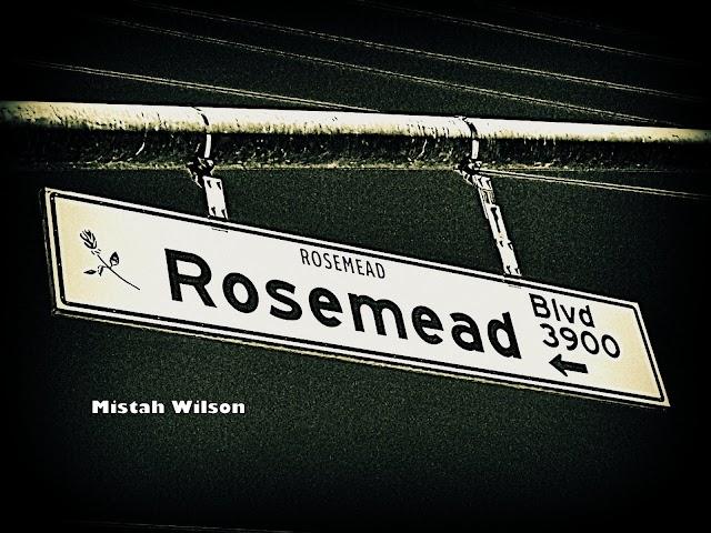 Rosemead Boulevard, Rosemead, California by Mistah Wilson