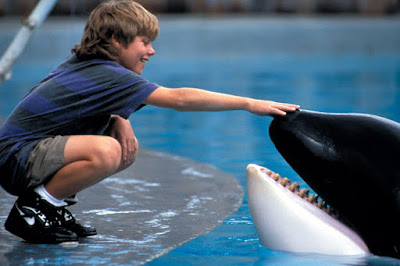 Histórias do Cinema - Free Willy, o Filme Paradoxal Que Acabou Por Matar Uma Orca Para Salvar Muitas Mais