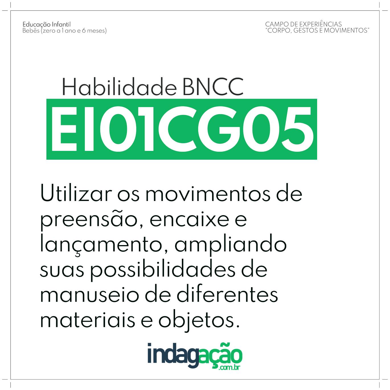 Habilidade EI01CG05 BNCC