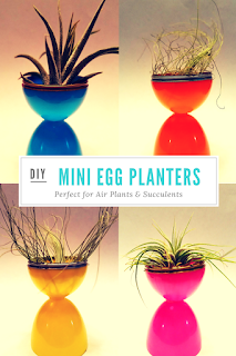 Recycle your old plastic eggs into these fun and functional planters. #reduce #reuse #recycle #upcycle
