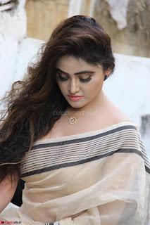 Sony Charishta in Brown saree Cute Beauty   IMG 3606 1600x1067.JPG