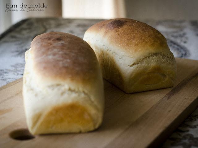 Pan-molde