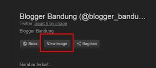 Cara Mengatasi View Image (Lihat Gambar) yang Dihapus Google