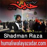 shiahd.blogspot.com/2017/09/shadman-raza-nohay-2005-to-2018.html
