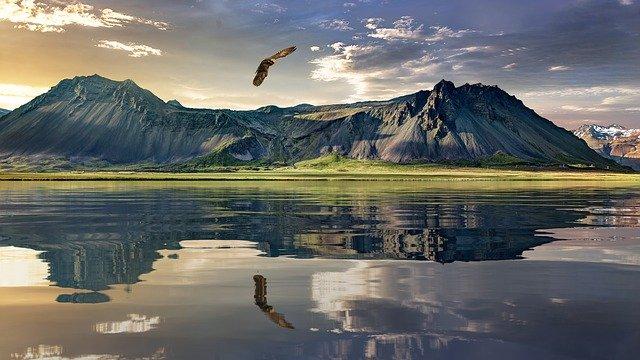 Ilustrasi Garuda Tak Bersayap (Pixabay)