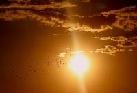 ما هي البقع الشمسية، الرياح الشمسية، و الانفجار الشمسي