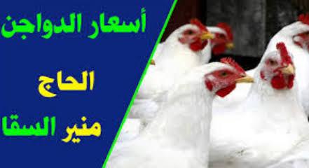 أسعار بورصة الدواجن الحاج منير السقا مصر 2021