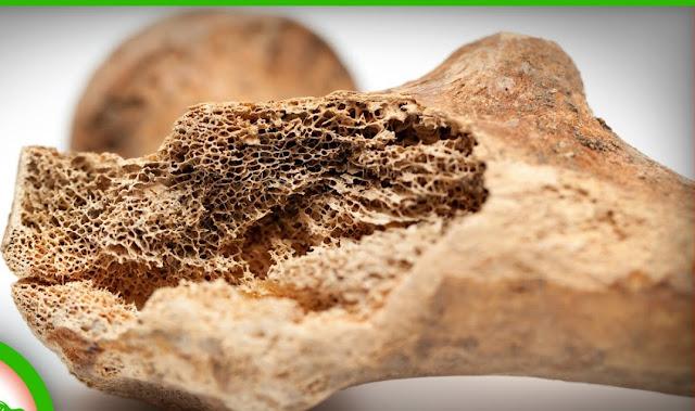 science_ Bones Began as Mineral Batteries