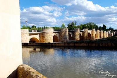 El Puente de los 16 ojos, de estilo romano cruza majestuoso sobre el río Duero.