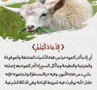 لفهم آيات القرآن الكريم 5.jpg