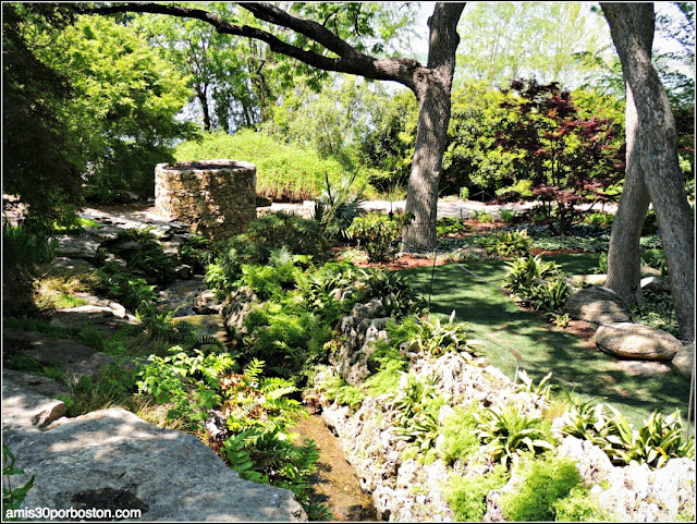 Dallas Arboretum & Botanical Garden: Nancy Rutchik Red Maple Rill