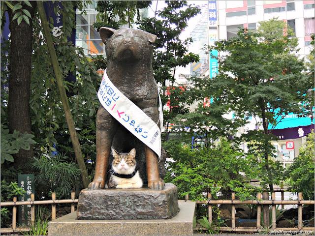 Hachikō en Shibuya, Tokio