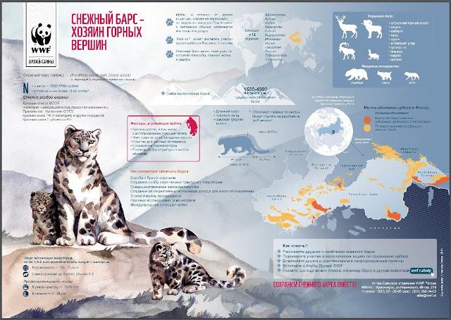 Стенгазета для распечатки с сайта WWF