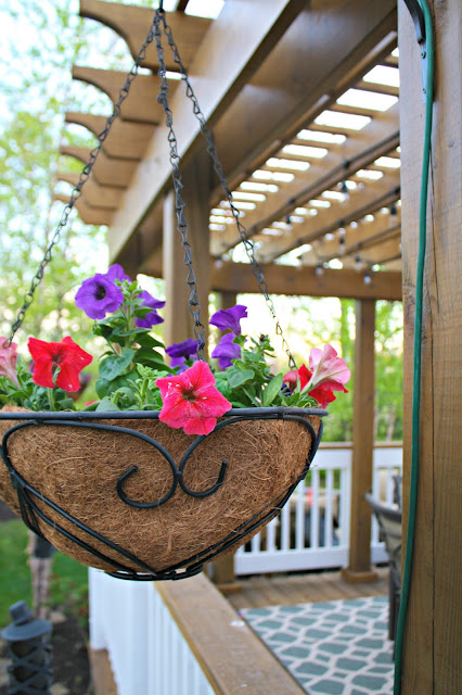 Hanging flower baskets on pergola