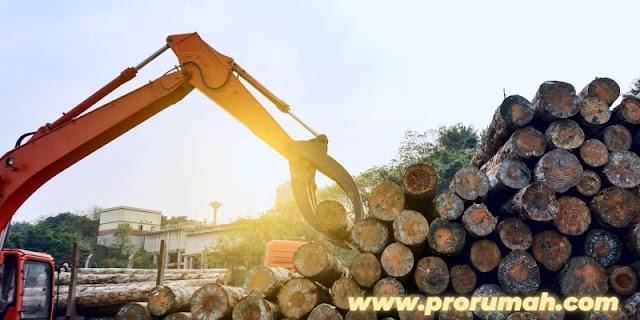 sifat dan karakteristik kayu bengkirai