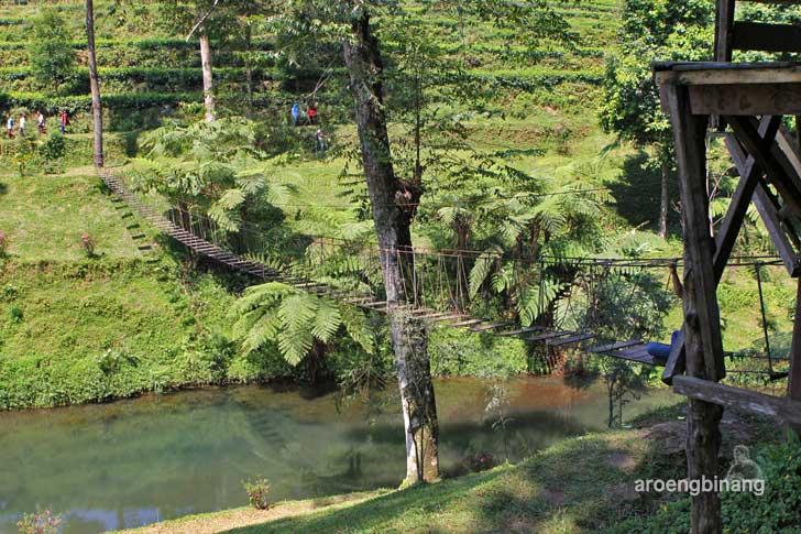 agrowisata perkebunan teh pagilaran batang