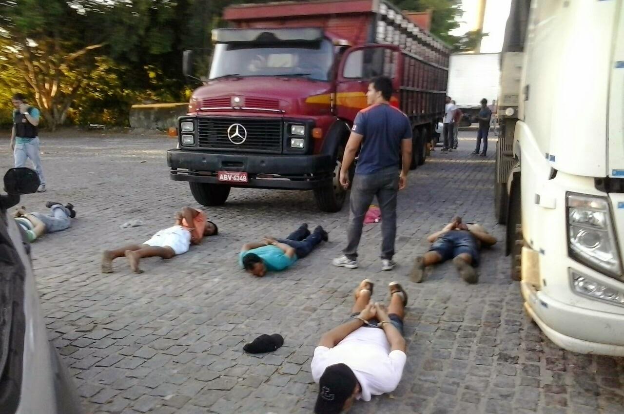 Paraibanos são presos com meia tonelada de maconha em caminhão que  transporta animais. LEIA! 272b013e481