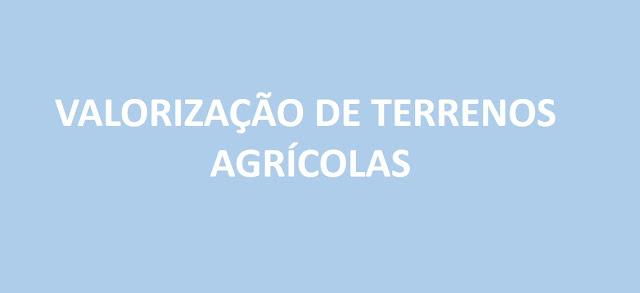 João Fonseca_Valorização de terrenos agrícolas | 919375417