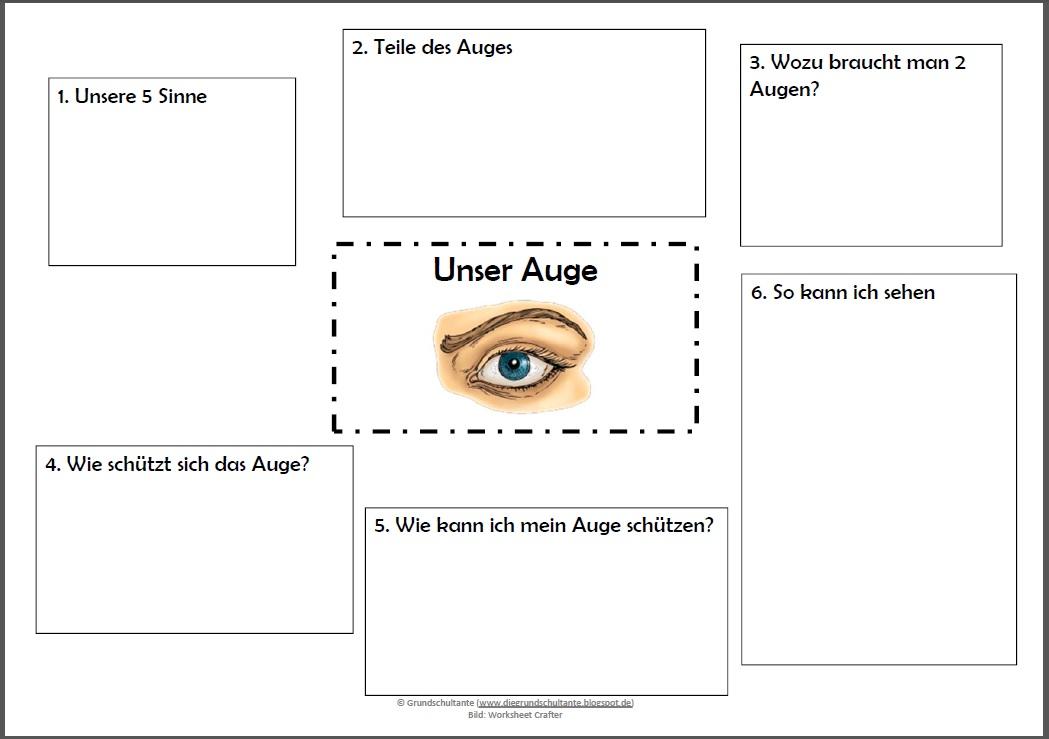 Großartig Auge Arbeitsblatt Zeitgenössisch - Super Lehrer ...