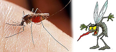 Sivrisinek Neye Gelmez ve Kovucu