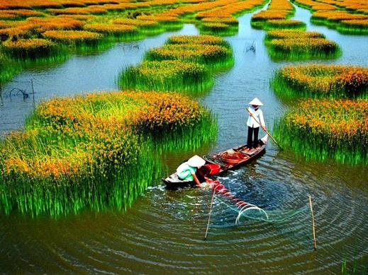 [Le Thi Hong Phuong]  Обзор литературы по протестантизму во Вьетнаме за последние 20 лет
