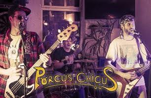 photo PORCUS CHICUS 2021
