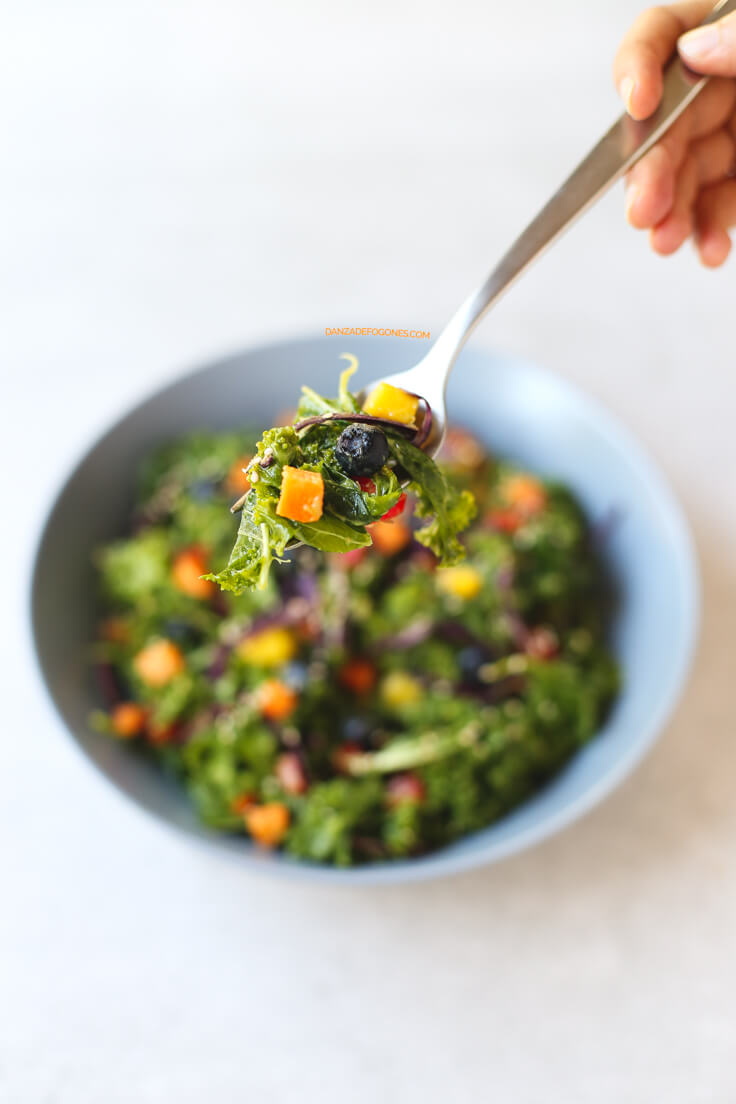 Vegan kale salad | danceofstoves.com #vegan