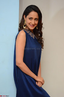 Pragya Jaiswal in beautiful Blue Gown Spicy Latest Pics February 2017 021.JPG