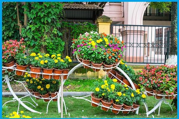 ideas for landscape gardening
