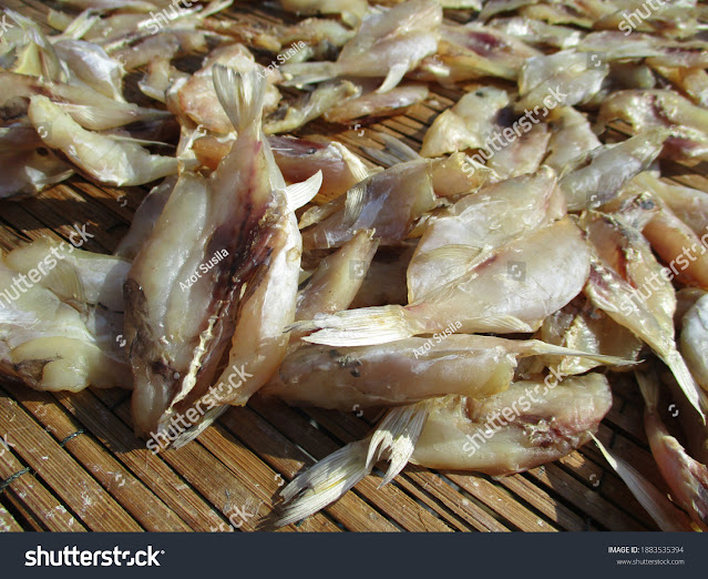 stock-photo-the-location-of-traditional-fishing-settlements-for-industry-and-business-producing-salted-fish-and-1883535394