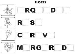 Bingo de flores