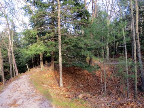 Ridge Trail Ludington State Park