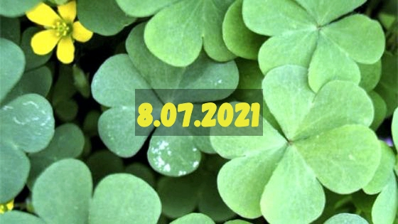 Нумерология и энергетика дня: что сулит удачу 8 июля 2021 года