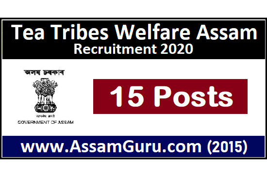 Tea Tribes Welfare Assam Job 2020