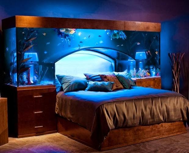Creative Home Designs - Recipes,Interior Home Design ... on best shark aquariums, ultimate aquariums, cool aquariums, fish tanks aquariums, most beautiful aquariums, petco aquariums, most unique aquariums, amazing saltwater aquariums, amazing aquariums and reefs, coral reef aquariums, amazing freshwater aquariums, world's best aquariums, crazy aquariums, most amazing aquariums, acrylic aquariums, awesome reef aquariums, custom reef aquariums, greatest aquariums, creative aquariums, built in aquariums,