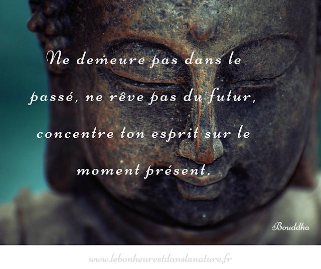 citation Bouddha bonheur