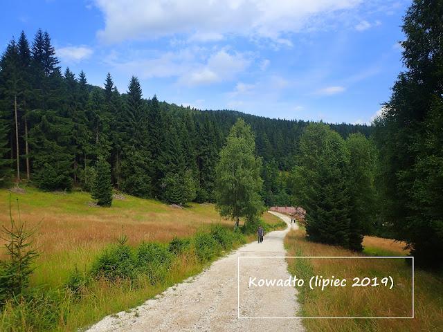 Kowadło - najwyższe w Górach Złotych, 989 m n.p.m