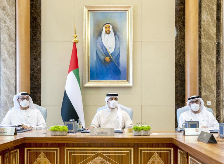 Sheikh Mansour bin Zayed chairs Ministerial Development Council meet