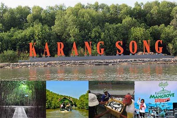 Konservasi Mangrove Karangsong