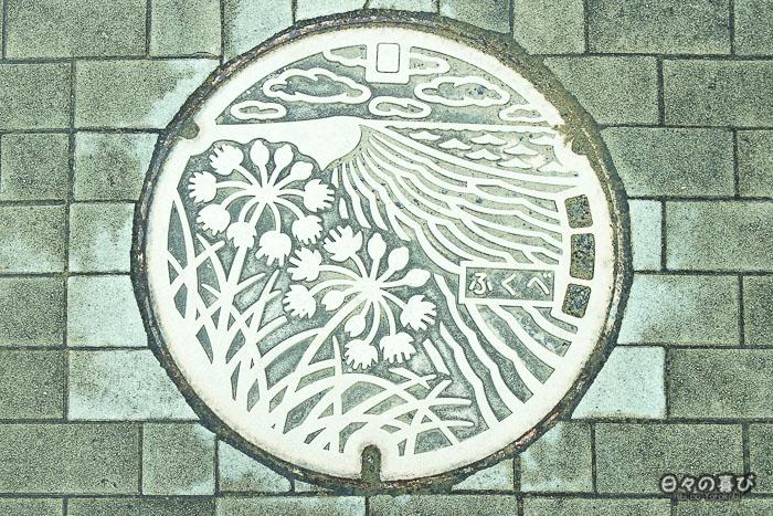 plaque d'égout motif dunes et végétation