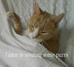 Tamir's not feeling well