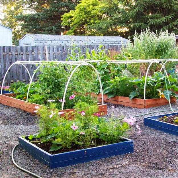 Home Garden Design Ideas: Home Gardening Flowers And Vegetables Ideas