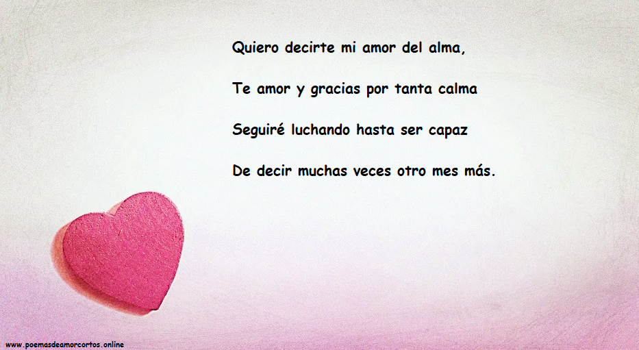 Poema de amor para cumple mes