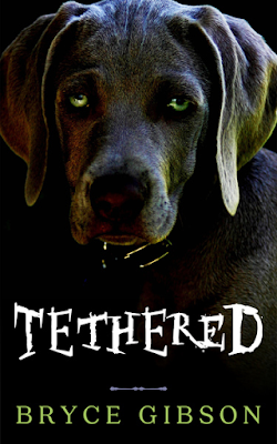 Front cover of 'Tethered' by Bryce Gibson