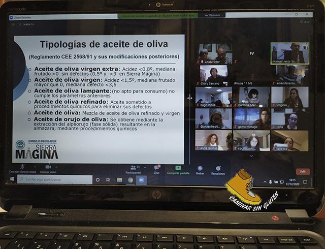TIPOLOGIA DE ACEITES DE OLIVA ESPAÑA