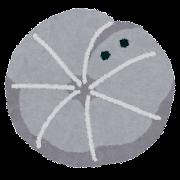 ダンゴムシのイラスト