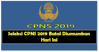 Seleksi CPNS 2019 Batal Diumumkan Hari Ini
