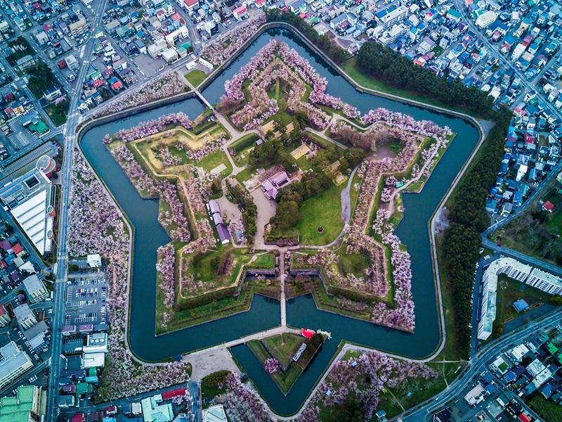 ป้อมโกเรียวคาคุ (Fort Goryokaku: 五稜郭)